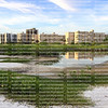 Fort Myers Beach front condos as seen from Little Estero Island Critical Wildlife Area.