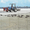 Cleaning Fort Myers Beach