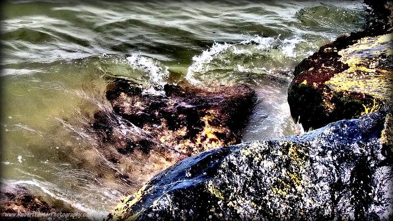 2015-09-23_P9230138_Honeymoon Isl ,Dunedin,Fl