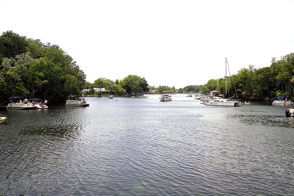 Homosassas River
