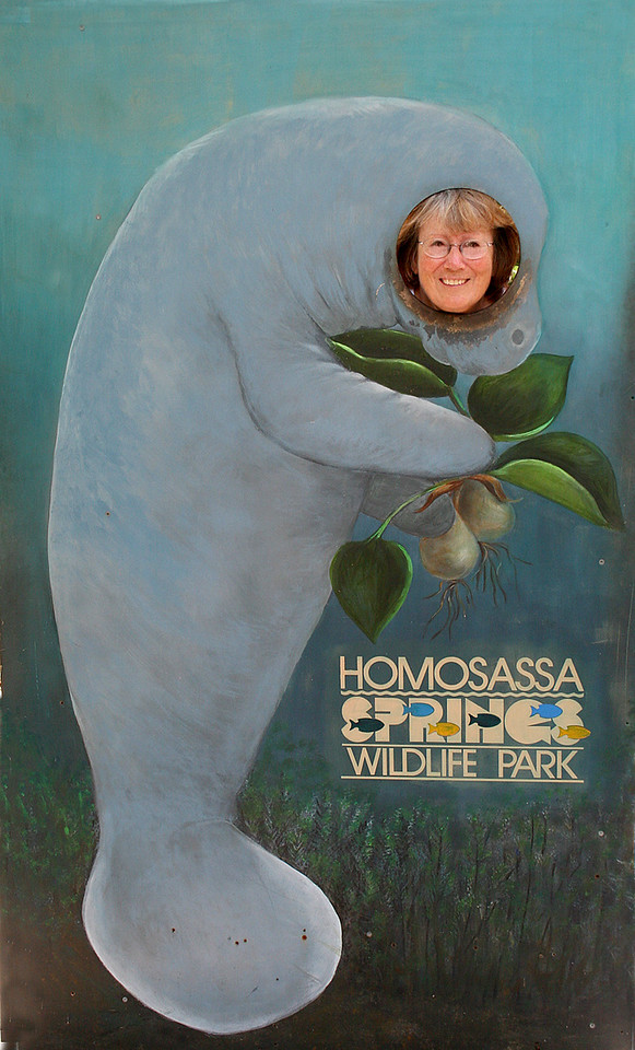 Susan in Manatee picture