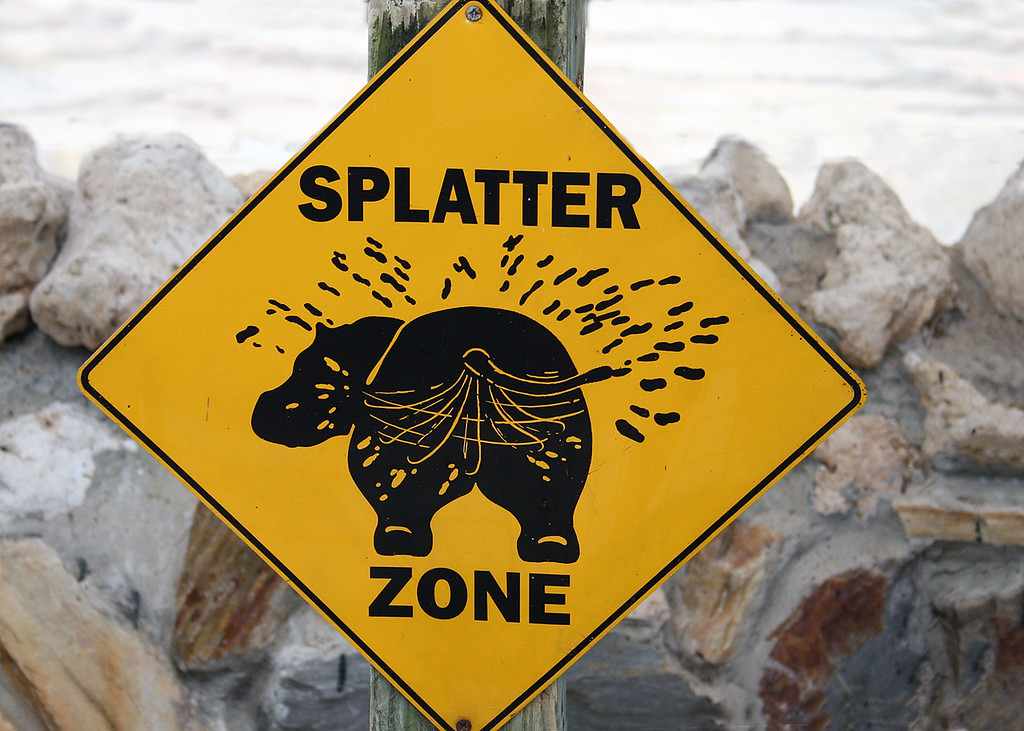 This sign is to warn you to stay clear of the hippo