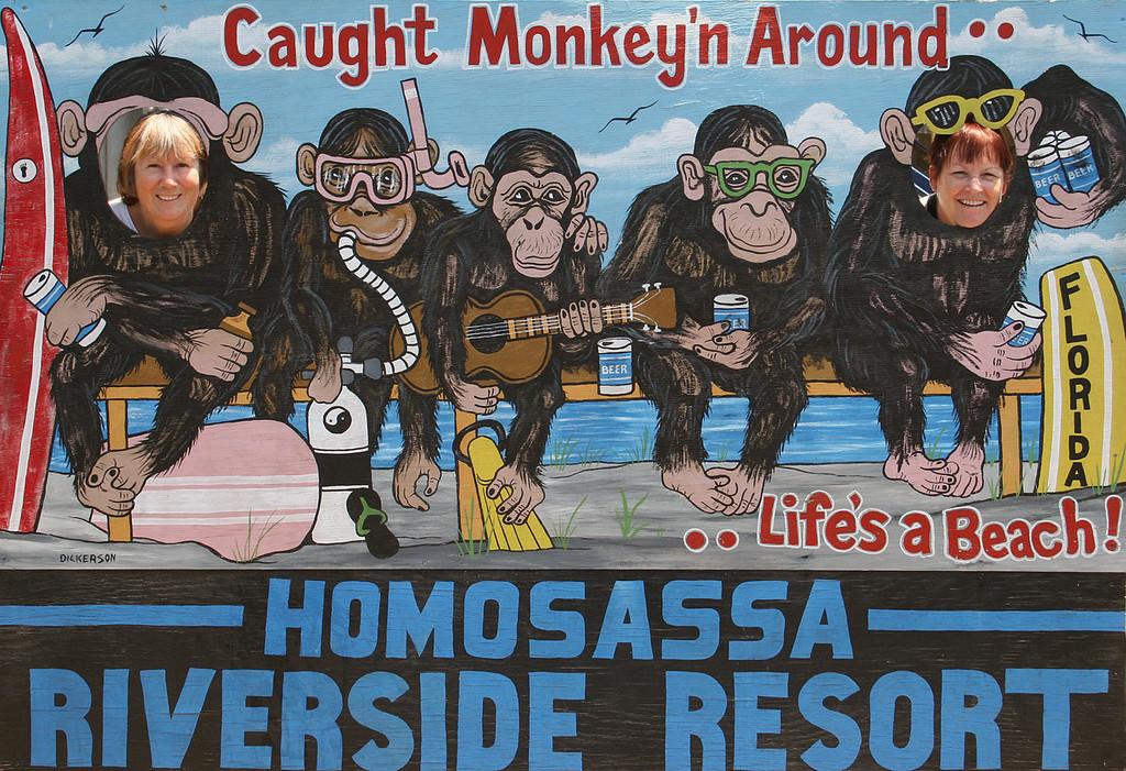 "Susan and Sharon Hanes ""Monkeying Around"""