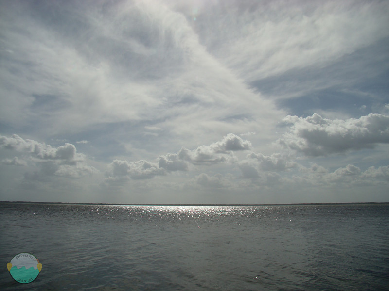 The sky and water.