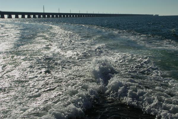 Bahia Honda, 7Mile Bridge, Snorkeling, Key Largo, Florida Keys