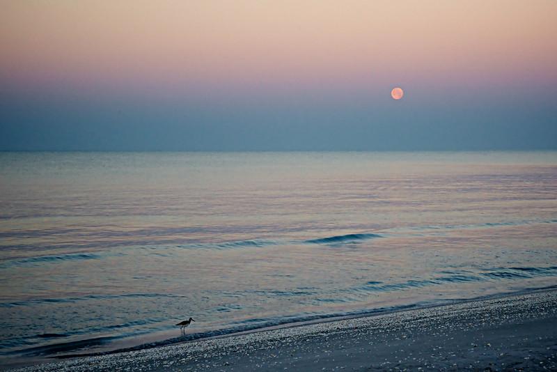 Moon set at sunrise - looking west.