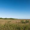 """""""River of Grass,"""" Everglades National Park, Florida"""