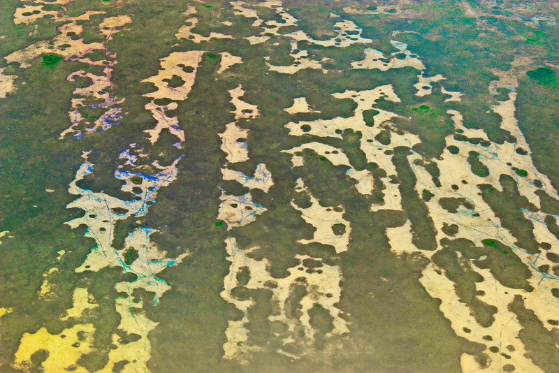 Everglades from the Air
