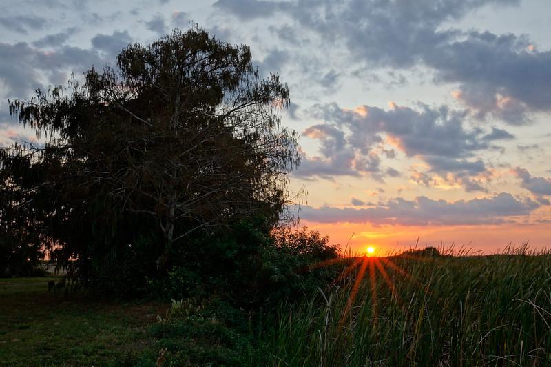 sunset burst at Loxahatchee Slough