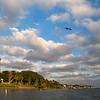 Jupiter Lighthouse with gull