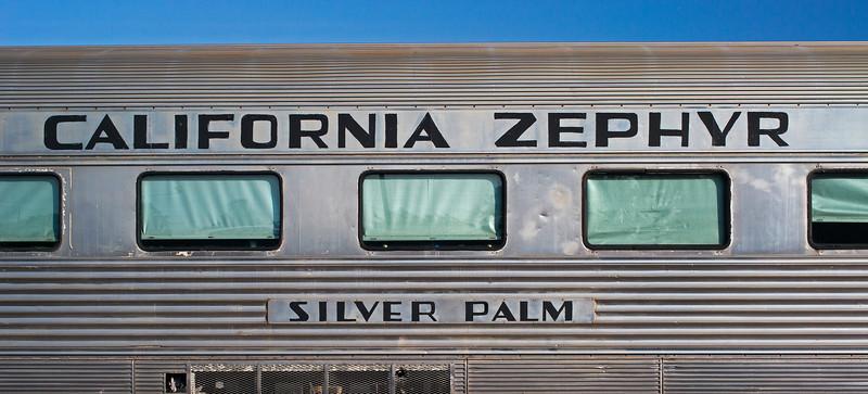 California Zephyr Silver Palm