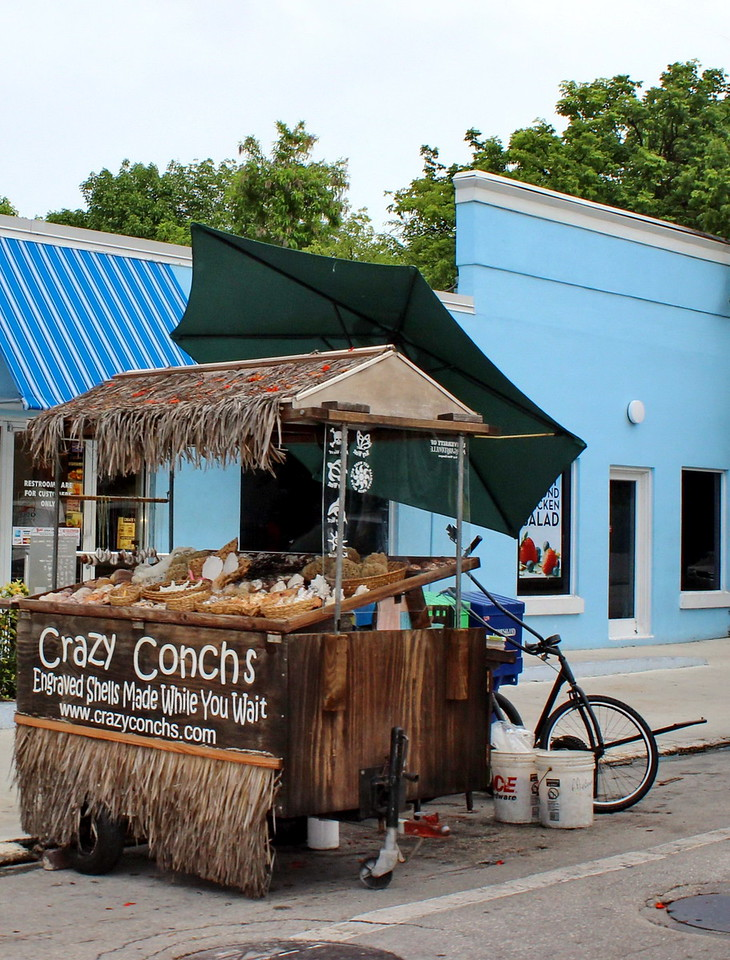 Crazy Conchs Stand
