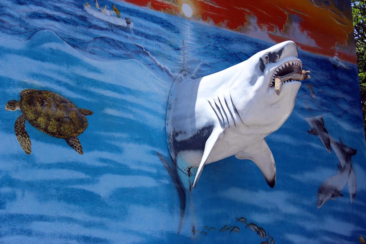 Shark Garage Art