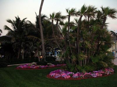 13   Marco Island Marriott