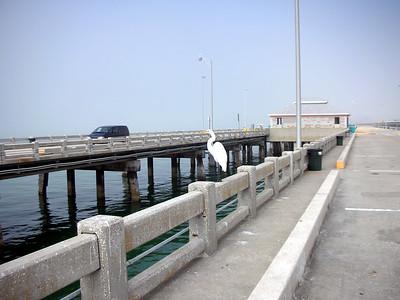 16  Fishing Pier -  Sunshine Skyway Bridge