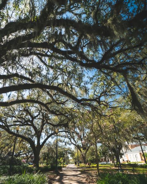 Tallahassee Florida Roadtrip Pic