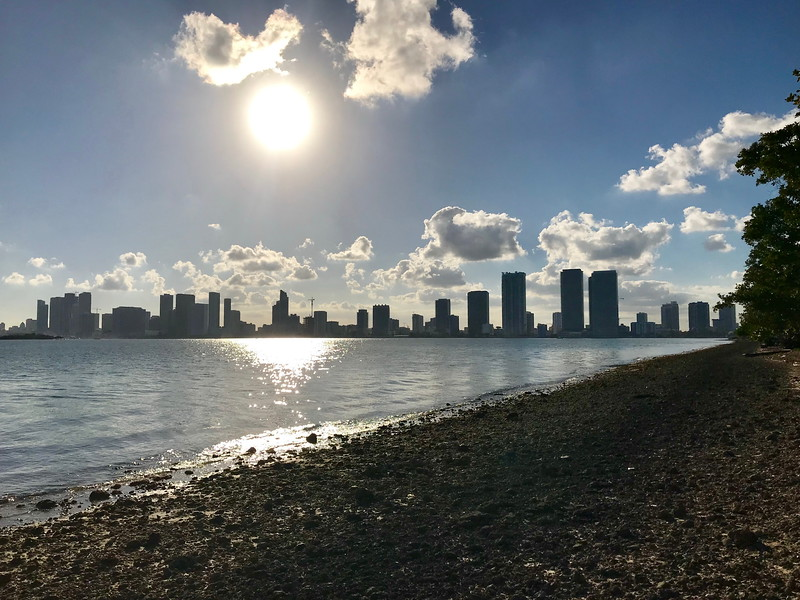 Miami Skyline from the Julia Tuttle Causeway