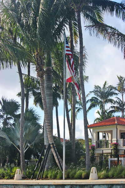 Flags of the USA and Florida