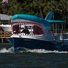 Mega Bite shark boat Boca Ciega Bay