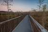 Dusk at Big Cypress National Preserve, FL<br /> <br /> FL-111230-0055