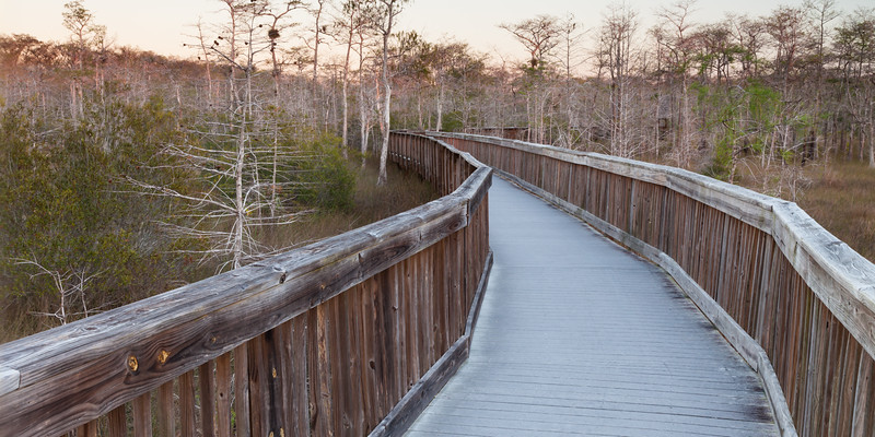 One of several boardwalks in the Big Cypress National Preserve. FL<br /> <br /> FL-111230-0039