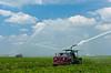 Fields of squash under irrigation near Homestead, Florida, USA.