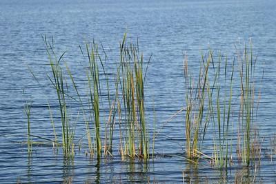 Lakes, November 2003