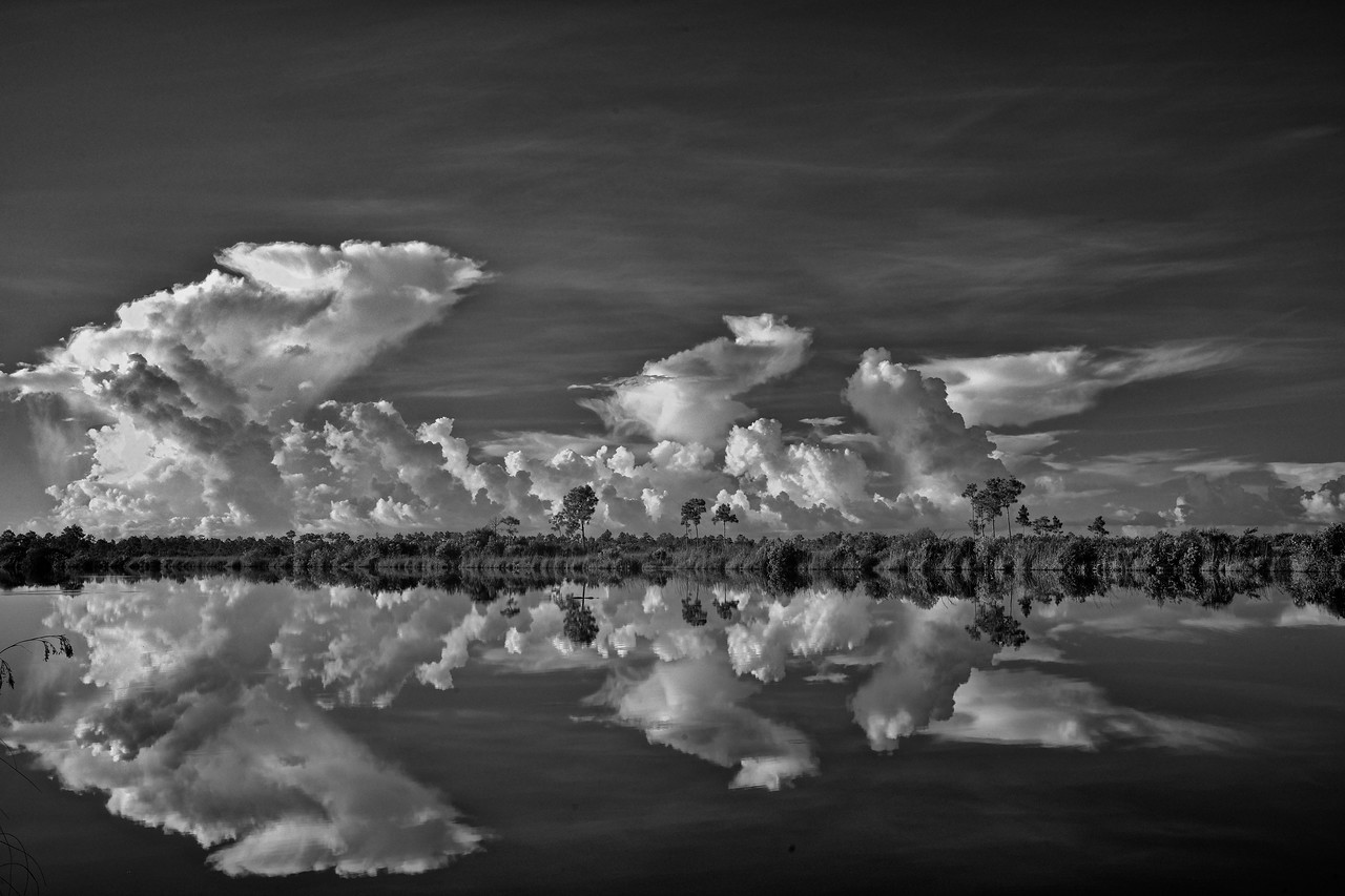 Clouds Sisal Pond Everglades National Park B and W #2