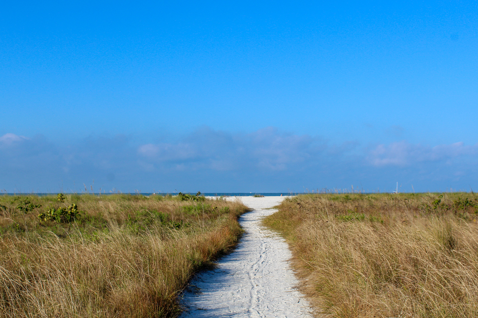 don't forget walking on the beach as one of the best things to do in marco island