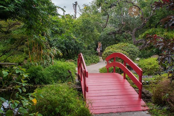 Miami Beach Botanical Gardens