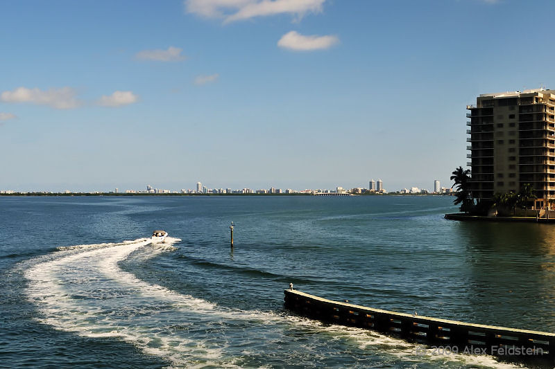 View from the Venetian Causeway