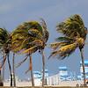 Haulover Beach, FL