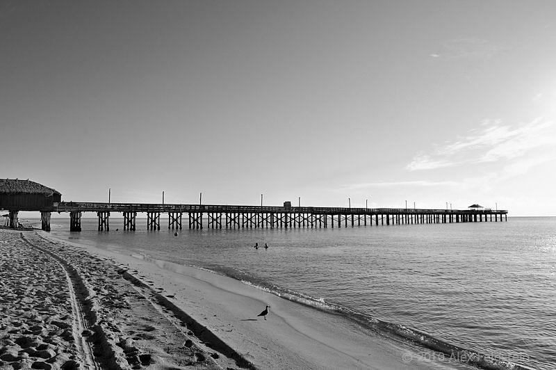 Sunny Isles Beach , FL