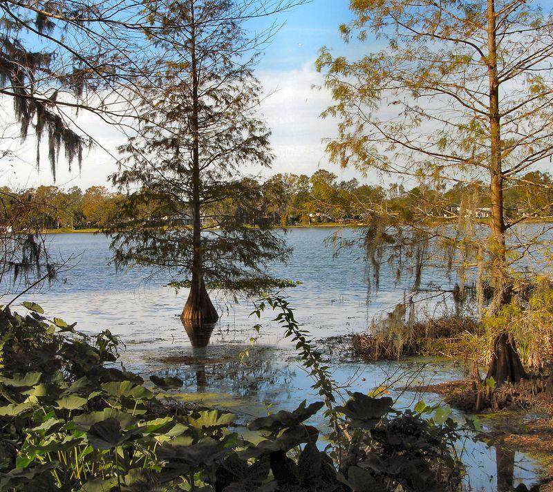 Lew Botanical Gardens - Orlando