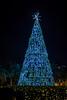 A lighted Christmas tree near Lake Eola illuminated at night in Orlando, Florida, USA.