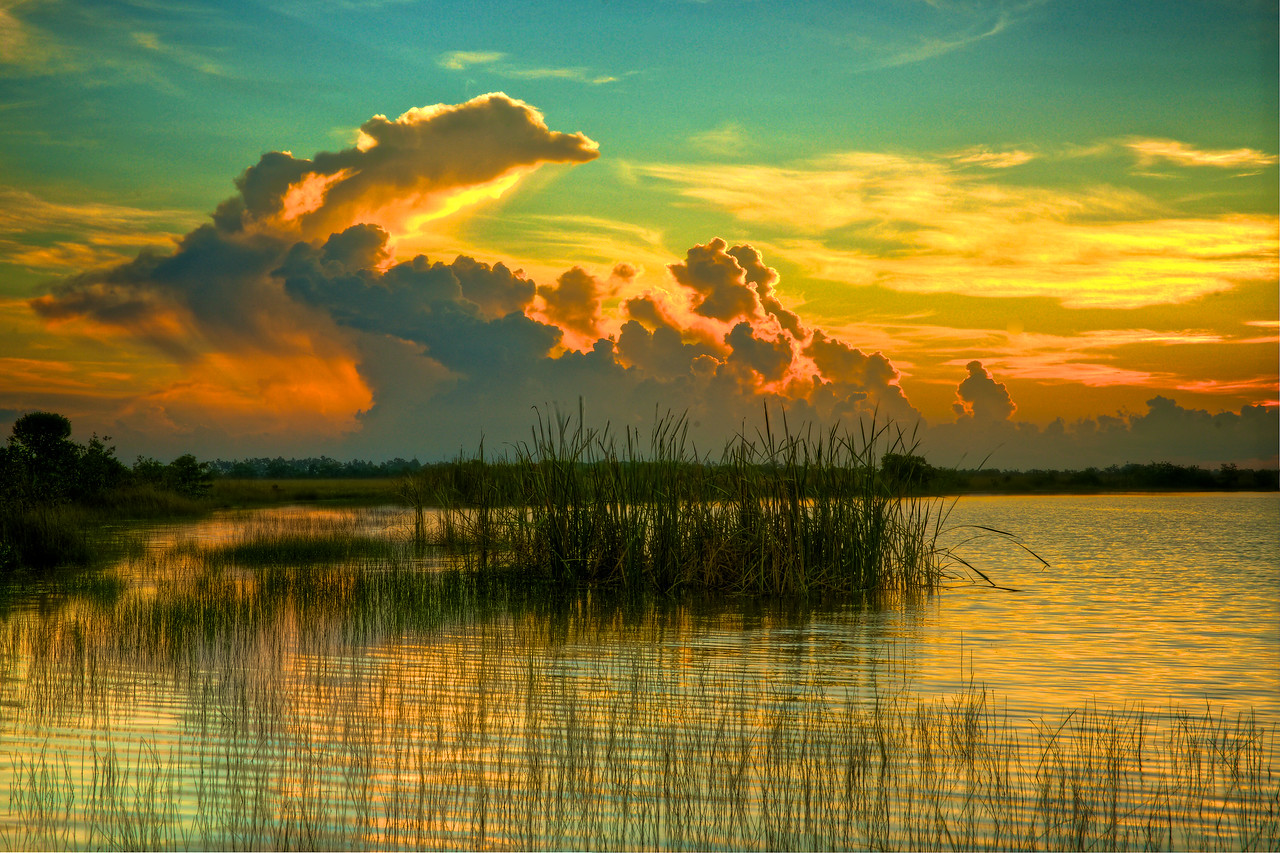 Sunrise Sweet Bay Lake - Everglades National Park # 2