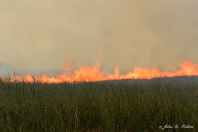 Prescribed fire 5