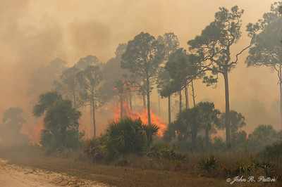 Prescribed fire 2