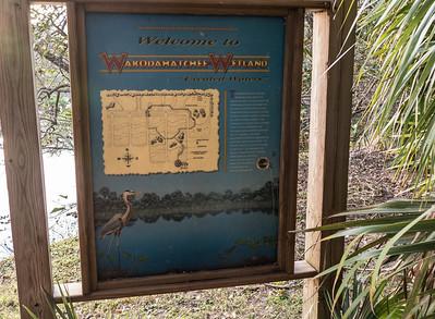 Wakodahatchee Wetlands, Palm Beach County, FL