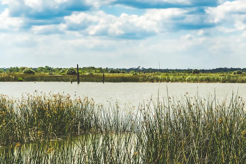 Ritch Grissom Memorial Viera Wetlands in Melbourne Florida