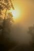 Sunrise-OcalaNF-9-11-19-SJS-003