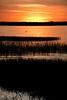 LakeEustisFlorida-3-12-20-SJS-001
