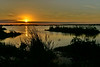 Sunset-EmeraldaMarsh-3-29-19-SJS-004