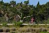 Biker-MerrittIslandNWR-4-6-18-SJS-001