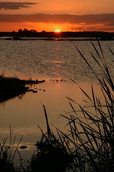 Sunset-EmeraldaMarsh-3-29-19-SJS-002