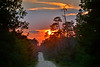 Sunset-OcalaNF-9-20-18-SJS-002