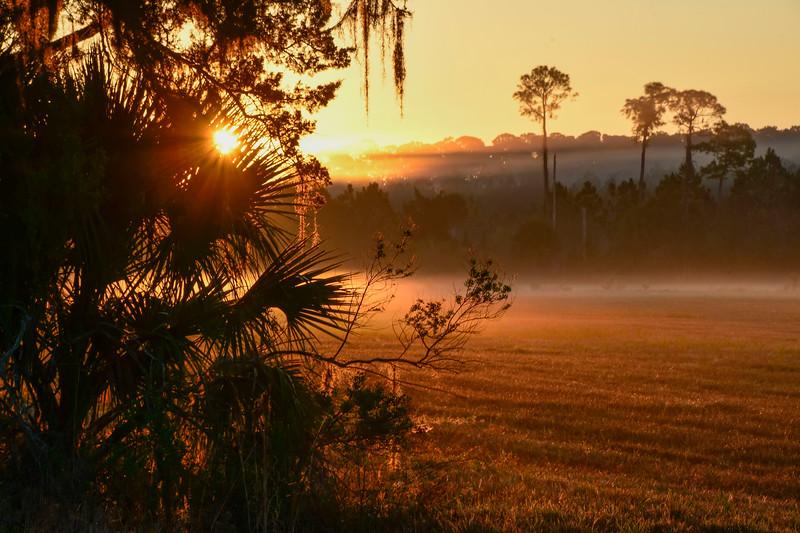 Sunrise-PineMeadowsCA-2-8-19-SJS-001