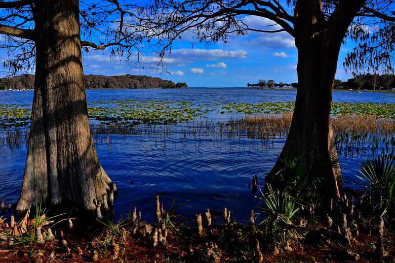 LakeHarrisLakeCoFL-2016-SJS-02