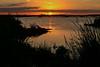 Sunset-EmeraldaMarsh-3-29-19-SJS-003