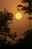 Sunrise-JoeOverstreet-6-5-19-SJS-001